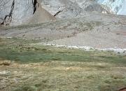 Aconcagua30055
