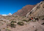 Aconcagua20028