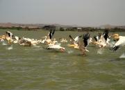 ethio_08-04-2013_12-29-52