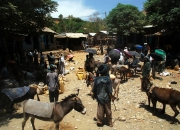 ethio_02-04-2013_10-40-35