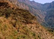 ethio_02-04-2013_11-34-33