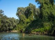Donau-Delta-1553