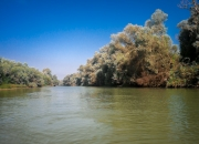 Donau-Delta-1605