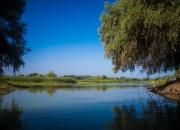 Donau-Delta-1606
