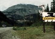 Alaska0053