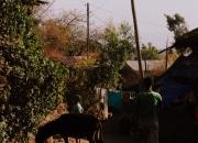 ethio_29-03-2013_13-59-41