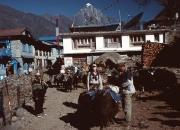 Nepal10031