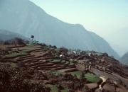 Nepal10033