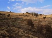 ethio_03-04-2013_14-59-56