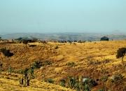 ethio_04-04-2013_05-26-59