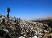 ethio_04-04-2013_09-08-32