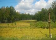 TS 08.09.2009 09-14-37.2009 09-14-37